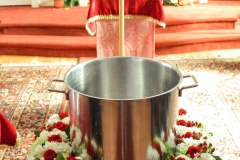 Theophany-Eve-Blessing-of-Water-2020-2565